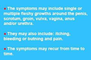 Common Symptoms of Genital Warts in Males & Femails