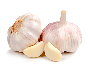 Fresh garlic juice can be applied onto the affected area