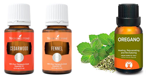 Cedarwood, Fennel and Oregano Essential Oils