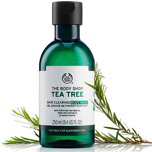 Tea Tree Skin Clearing Body Wash by The Body Shop